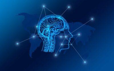 Az angol nyelvoktatás óriási hatással van az agyadra